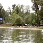 Fotoaufnahmen MA44 vom Wiener Gänsehäufel