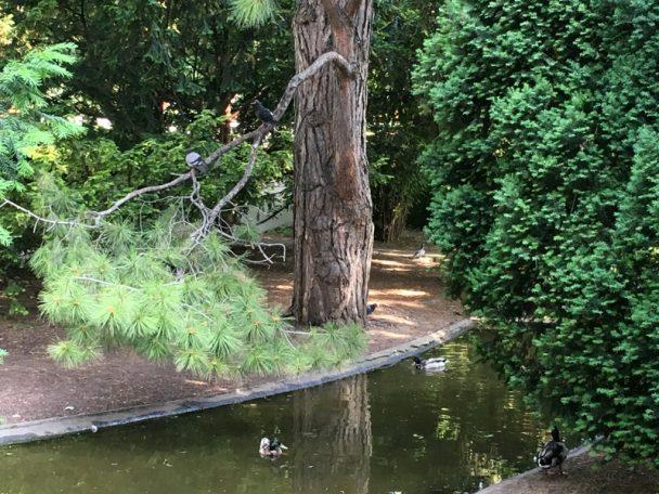 Warum der Wiener Stadtpark immer einen Ausflug wert ist
