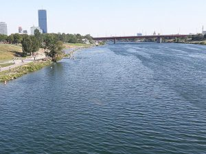 Plätze zum Drachen steigen lassen - Donauinsel