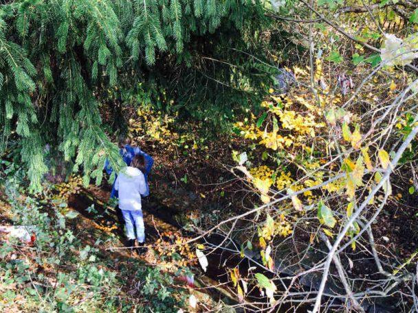 Geocaching im Wald