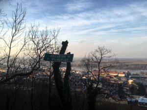 Burgruine Hainburg am Weg hinauf