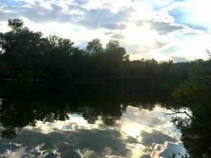 Schwimmen in der Lobau - Dechantlacke im blog.kinderinfowien.at