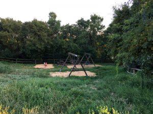 Ausflug zum Cobenzl - spielen, wandern, Tiere besuchen im blog.kinderinfowien.at